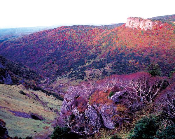 图为汉拿山秋天的风景 摄影:吴熙三