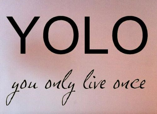 YOLO族-You Only Live Once